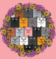doodle cute multicolored cats and one pink kitty vector image