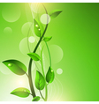 Green sprout vector image vector image