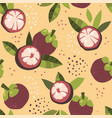 modern seamless pattern with mangosteen vector image