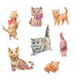 watercolor cats cute pets vector image vector image