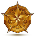 3d classic royal symbol sophisticated golden star vector image vector image