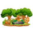 bear on isolated jungle island vector image vector image