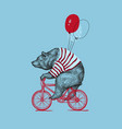 bear ride bike balloon grunge print vector image vector image