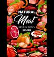 butcher shop meat sausages salami vector image vector image
