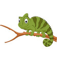 cartoon chameleon on a branch vector image vector image