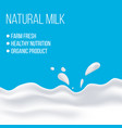 natural dairy and milk product vector image vector image