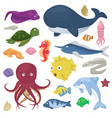 sea animals water plants ocean fish cartoon vector image vector image