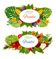 tropical fruits exotic food on palm leaves vector image vector image