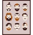 big beard kit vector image vector image