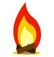 bonfire or color vector image vector image