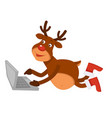 christmas polar deer in boots lies and uses laptop vector image vector image