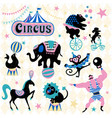 circus animals attraction vector image vector image