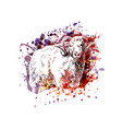 color of a ram vector image