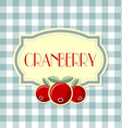 cranberry label on squared background vector image