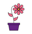 cute flower in the pot vector image