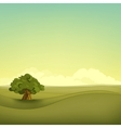field landscape vector image
