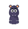 isolated cute hippo on white background vector image vector image