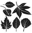 leaves silhouette collection vector image vector image