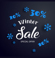 sale banner background for new year shopping sale vector image vector image