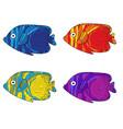 fish colorful set hand drawing vector image