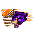 cougar puma mascot with mountain lion head vector image vector image