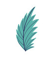 leaf palm foliage nature isolated design icon vector image
