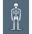 Sad skeleton Frustrated skull Sorrowful dead vector image vector image