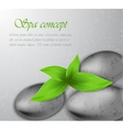Spa stone with leaves vector image