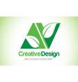 av green leaf letter design logo eco bio leaf vector image vector image