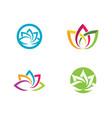 beauty lotus flowers design vector image