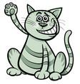 cat or kitten cartoon comic animal character vector image vector image