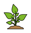 green plant sprout icon imag vector image vector image