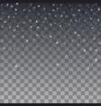 snowflake falling christmas snow fall isolated vector image