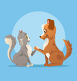 cat and dog characters best friends smiling vector image vector image