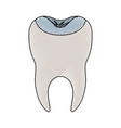 restored tooth with root in colored crayon vector image vector image