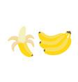 set bunches fresh banana isolated on white vector image