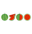 watermelon icon set line whole ripe green stem vector image vector image