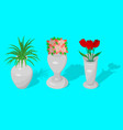 a set of jugs and a vase with decorative flowers vector image