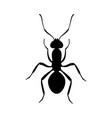ant black silhouette top view icon or insect vector image vector image