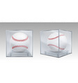 baseball balls in glass case front and corner view vector image