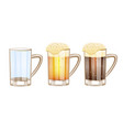 beer glasses different versions - empty light vector image vector image