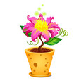 fantasy bright burning flower in flowerpot with vector image vector image