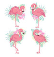 flamingo flamingo set vector image vector image