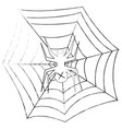 grunge spider in the web on a vector image vector image