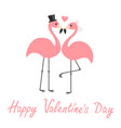 Happy valentines day pink flamingo set wedding