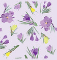 pattern crocus spring flowers collection vector image