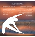 Yoga pose infographics benefits of practice vector image vector image