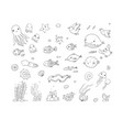 big set of marine sea theme cute cartoon turtle vector image