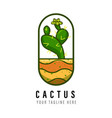 cactus logo design template vector image vector image