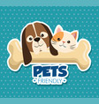 dog and cat with bone cute mascots vector image